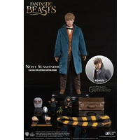 Newt Scamander Fantastic Beasts Action Figure 1/6 Grey Coat