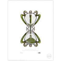 Horace Slughorn's Hourglass Limited Edition Print