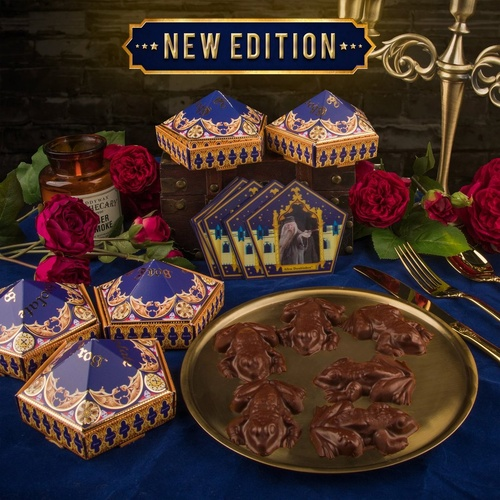 Chocolate Frog Mould and Box Set